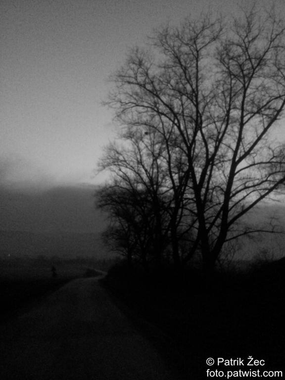 cesta-auta-doprava-strom-nebo-mraky-obloha-priroda-initial-d-09-02-2014-bw