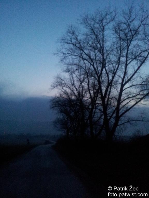 Cesta (09.02.2014)